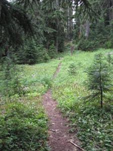 ridgewalking