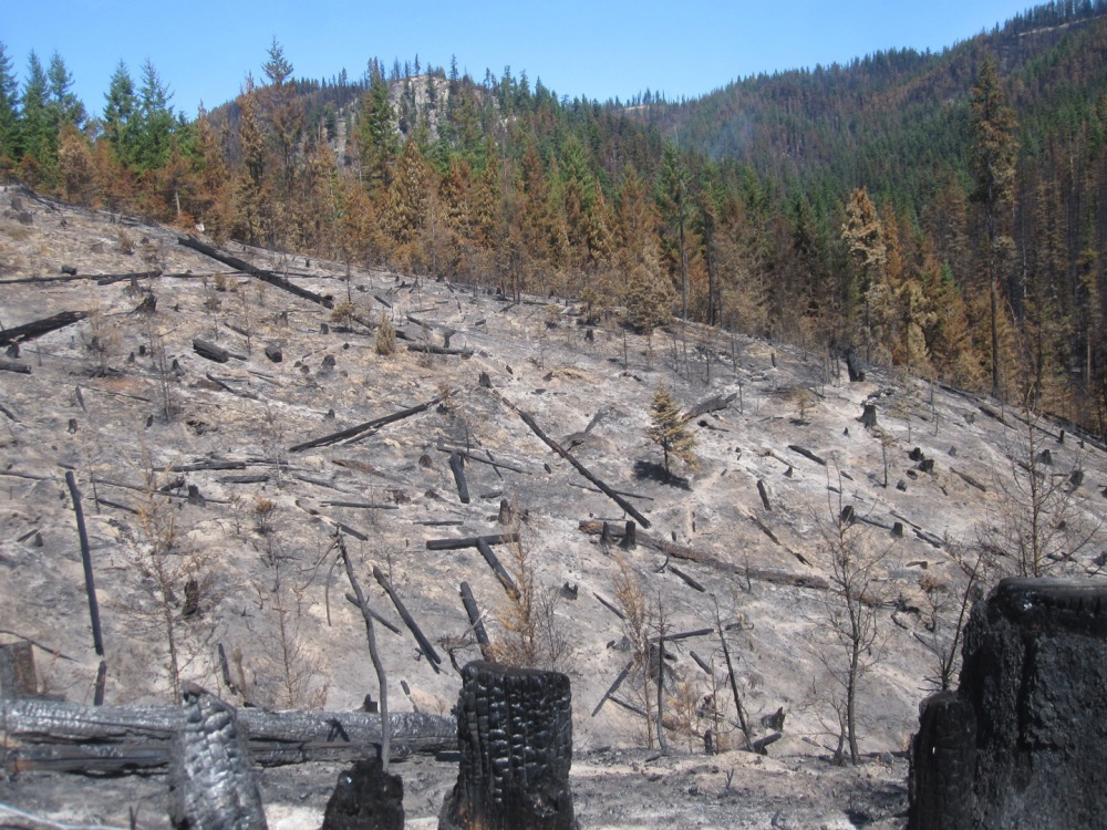 South Cle Elum Ridge Fire, 8-19-14