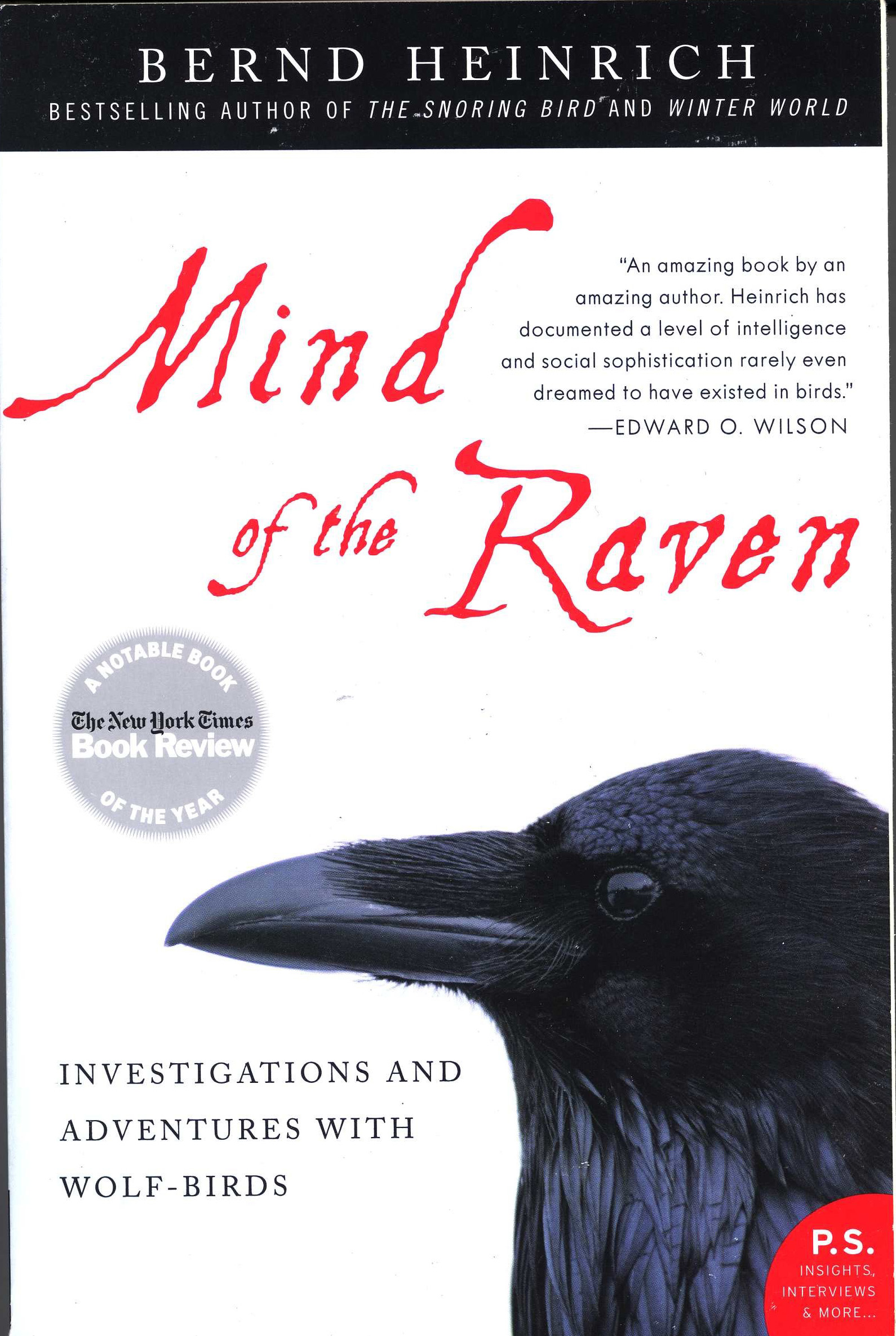 Book Review Sample Essay Book Review Mind Of The Raven Ramekin Cottage Confession I Ve Been  Fascinated By Ravens Since Affirmative Action Essay also Essay Punctuality The Raven Essay Paul Elder Co The Raven  A Summary Analysis Of  Helicopter Parents Essay